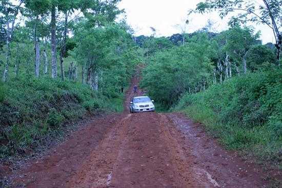 Auf der Fahrt in der Teak-Plantage Terra Verde, Costa Rica
