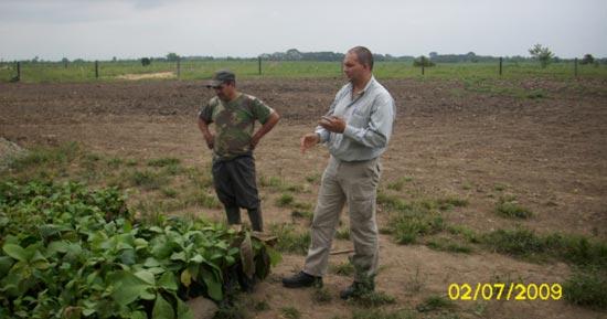 Senior Pineda mit Bodenproben in der Teakholz-Versuchsanlage.