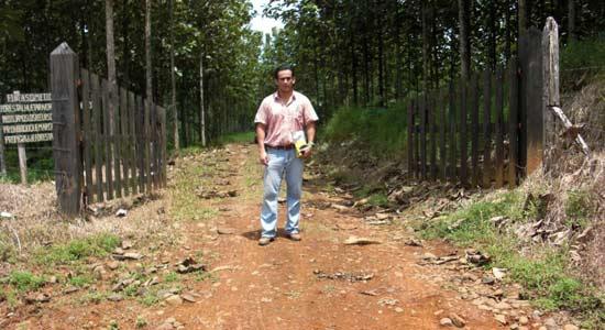 """Dr. Diego Perez auf Kontrollbesuch in der Teak-Plantage """"La Aldea"""" / Costa Rica."""