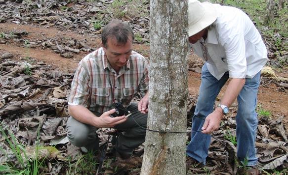 Herr Jentsch und GF Detlef Helling kontrollieren die individuellen Baumnummern mittels GPS-Daten in der Plantage 'Terra Verde'