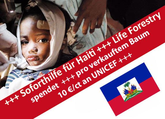 Die Spendengelder lässt Life Forestry der Unicef zukommen.