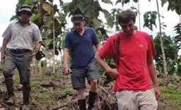 Dr. Diego Perez (links), J. Faller (Mitte) und dessen Freund Joachim (rechts) bei der Plantagenbesichtigung auf 'Terra Verde'.