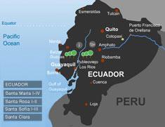 Life Forestry Plantagen Ecuador