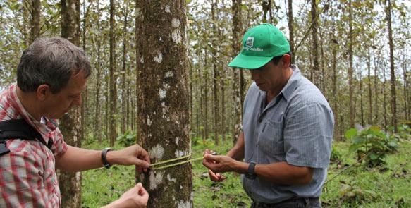 Lambert Liesenberg, Geschäftsführer Life Forestry Switzerland AG und Dr. Diego Perez, Forstdirektor der Life Forestry Costa Rica S.A.