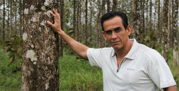 Life Forestry Forstdirektor Dr. Diego Perez