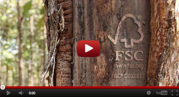 Videos Life Forestry