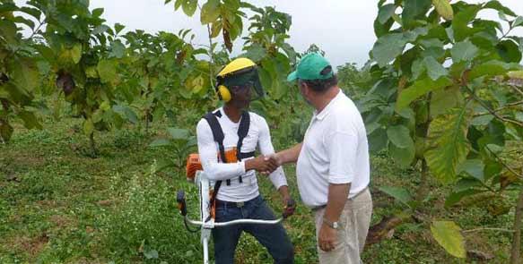 Knut Radicke bedankt sich beim Plantagenmitarbeiter