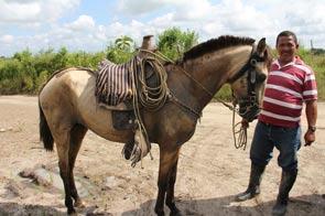 Stolzes Pferd und stolze Mitarbeiter
