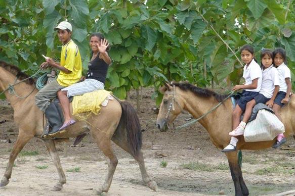 Ritt mit dem Pferd