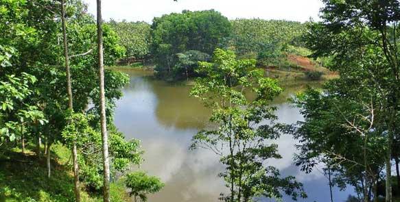 Biotop mit Natursee auf ''Santa Elena''