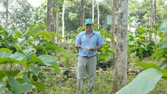 Forstdirektor Dr. Ing. Diego Perez auf Kontrollgang