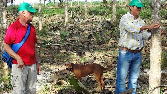 Dr. Perez überprüft das Baumwachstum