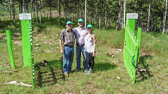 Kundenbesuch auf der Life Forestry Plantage