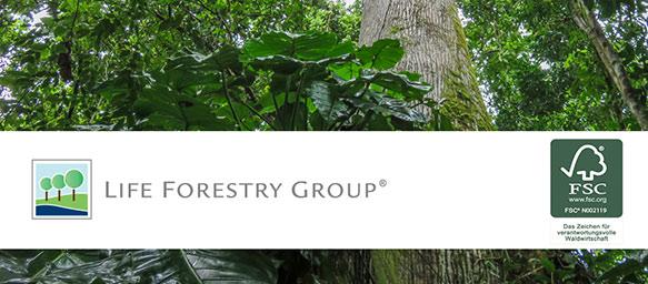 Life Forestry Teak-Plantagen