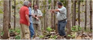 teakplantagen-plantagen-management_02