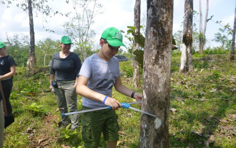 "Life Forestry Kunde auf ""Santa Irena"""
