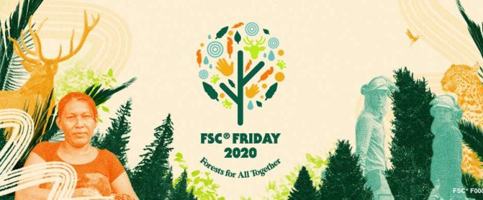 Der FSC -Friday ruft zu mehr Waldschutz auf