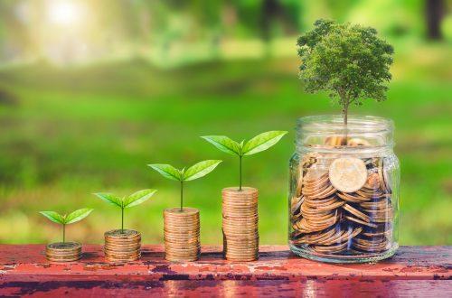 Holz ist ist top Investitionsmöglichkeit für das kommende Jahrzehnt. Bildquelle: TH2I Shutter Rich/Shutterstock